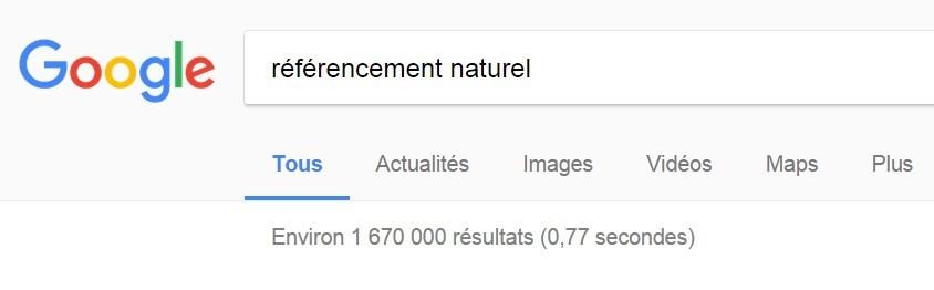 Les techniques de référencement naturel (seo)